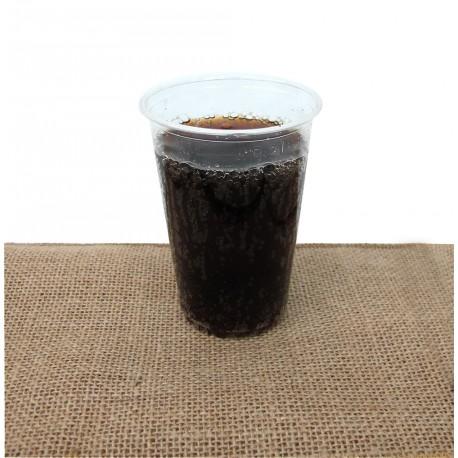 Vaso compostable PLA 200-235ml pack 50u